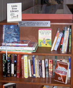 Academy Little Library