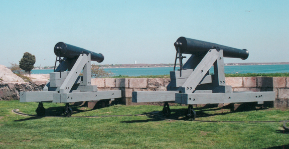 Fort Cannons