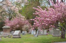 Riverside Cemetery Walking Tour