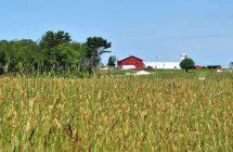 Shaw Farm Trail