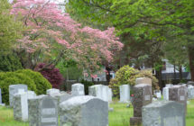 Riverside Cemetery Evening Tour